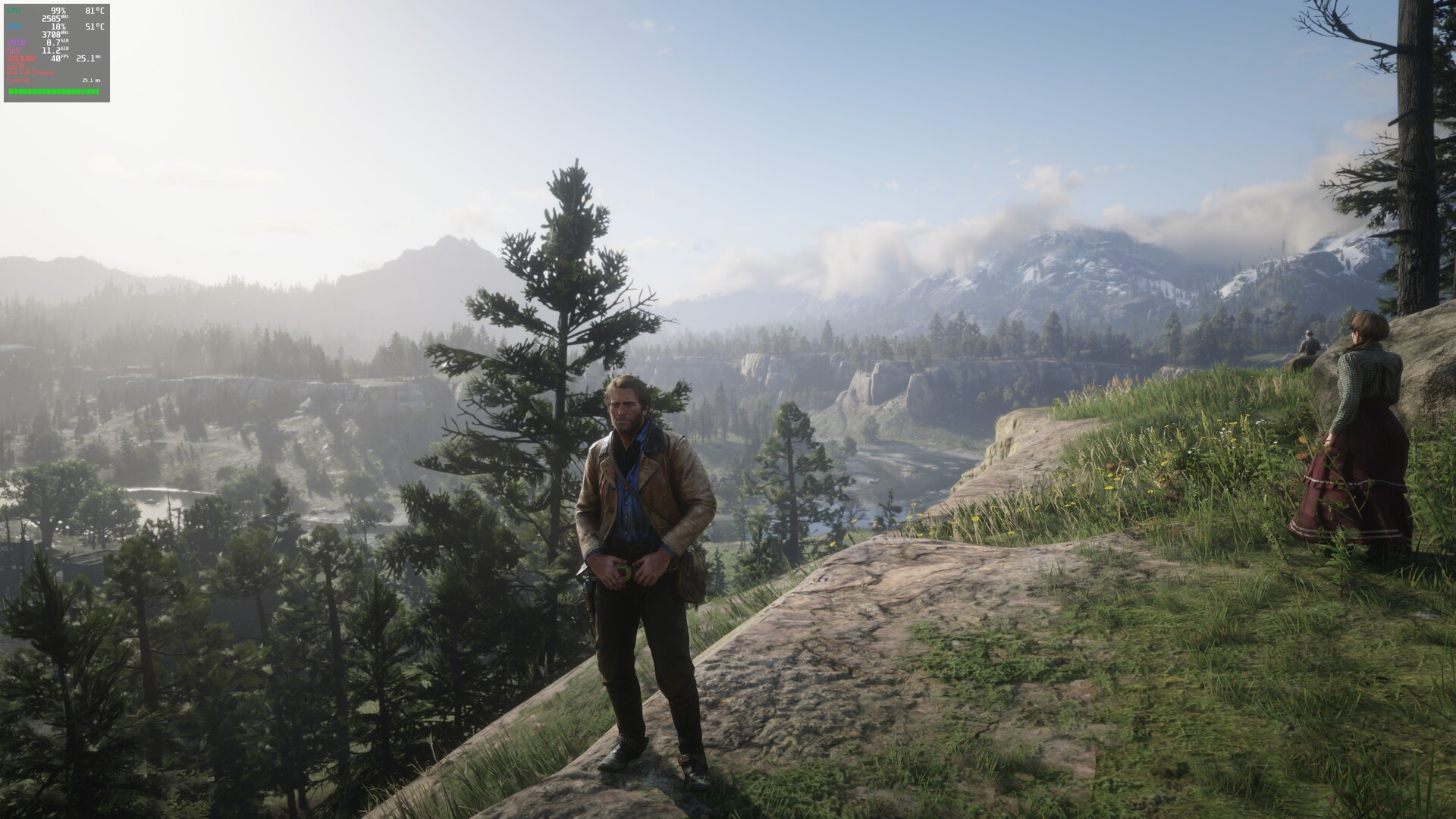 AMD Linux Build: ReD Dead Redemption 2